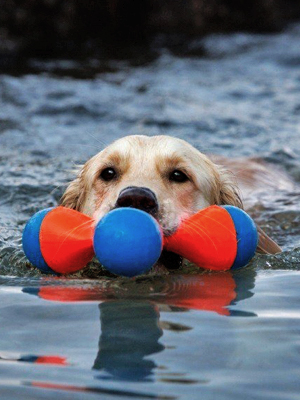 water dog toy, dog bumper, dog floating toy, floating dog toys for large dogs, floating dog toys,