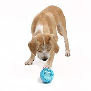 dog play toy, dog play toys, interactive dog toys, slow feed toy, dog slow feed, dog feeding,