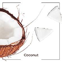 coconut oil ingredient organic