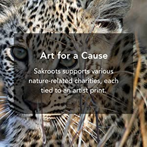 charity, animals, nature, patterns, artist, art, prints, sakroots