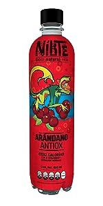 Nikte Arandano Antiox 500ml