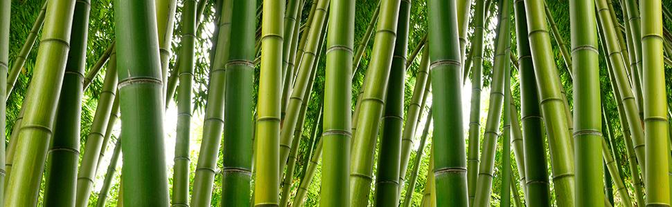 aus nat/ürlichem Bambus Relaxdays 25 x Bambusst/äbe 120cm Bambusrohre zum Basteln Natur Bambusstangen als Rankhilfe oder Deko