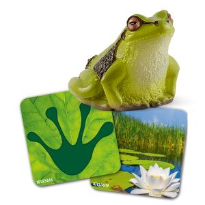 Schleich Flash Cards w//Bear,Frog,Squirrel Wild Life Figure Toy NEW 2019 42474
