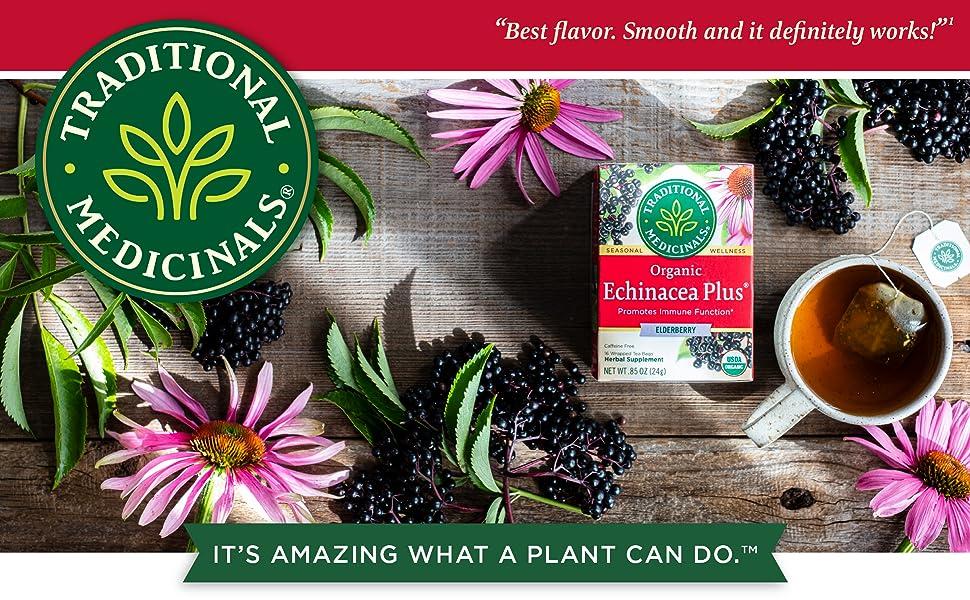 Organic Echinacea Plus Elderberry Seasonal Tea