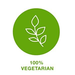 vegetarian;ingredients
