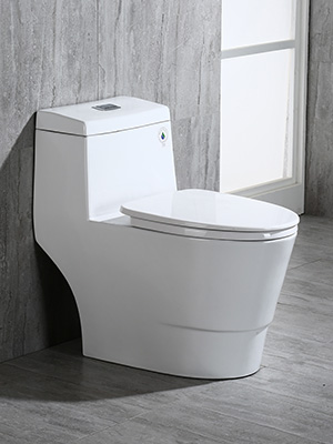 What Is The Highest Toilet Seat Height