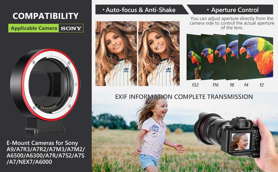 Neewer Adaptateur de Monture dObjectif Compatible avec Sony Alpha A-Type Minolta MAF AF Objectif /à Monture pour Appareil Photo Sony NEX E-Mount tel que Sony A9II A9 A7RIV A7IV A7RIII A7SIII A7III etc