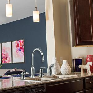 Madison By Deign House Kitchen Faucet