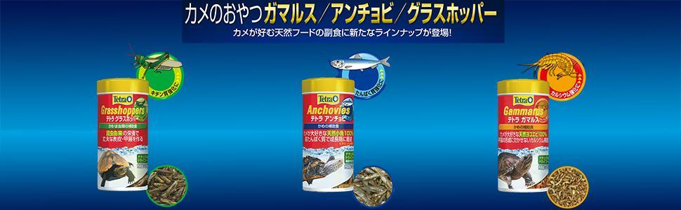 カメ 亀 おやつ 天然
