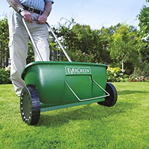 Spread lawn seed with an EverGreen Easy Spreader +