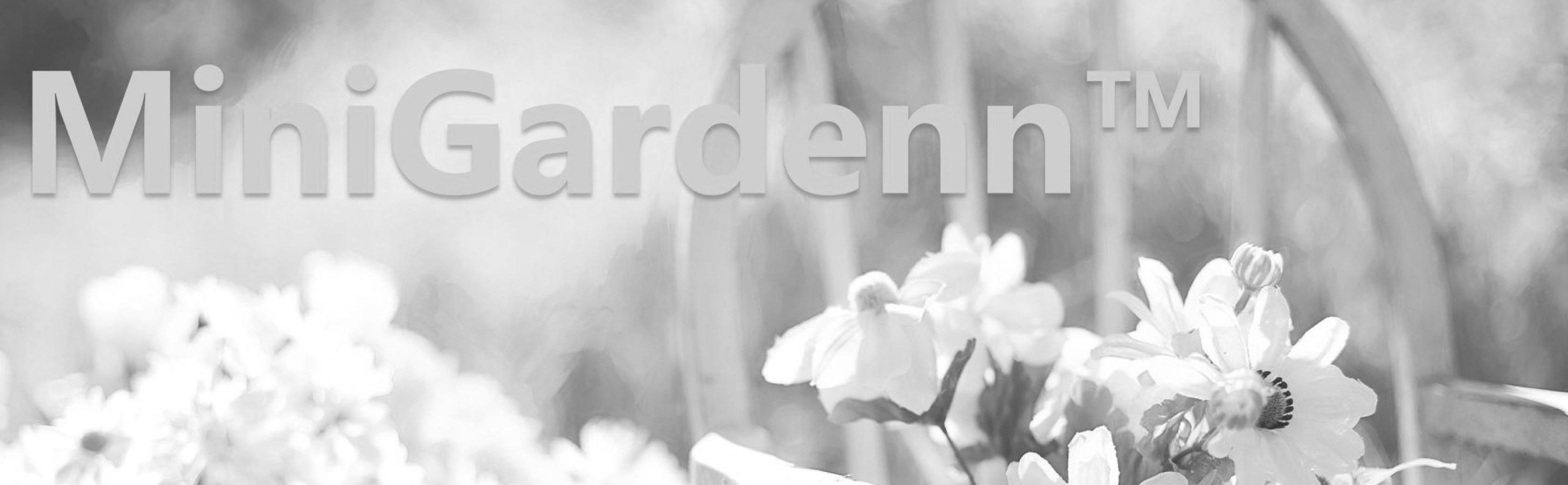 amazon com g u0026 f 10022gr minigarden fairy garden miniature green