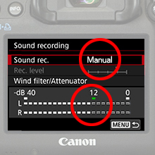 Manual Audio Settings