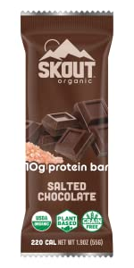 Salted Chocolate Skout Organic Plant Based Protein Bar Vegan Non GMO