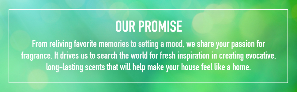 Our Promise Banner
