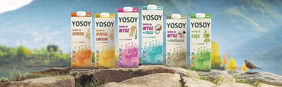 Descubre las bebidas YOSOY. Nada más que naturaleza en ...