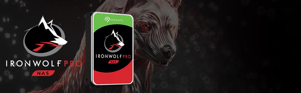 IronWolf Pro