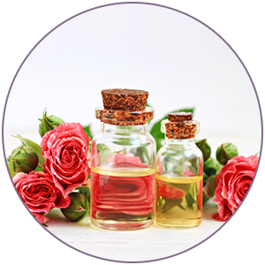 Rose Otto Extract