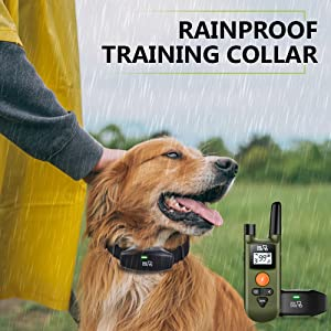 dog training collar with remote dog care training collar