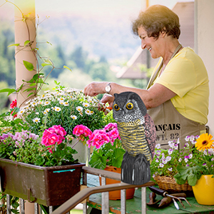 Relaxdays Búho espantapájaros, Cabeza giratoria, Decoración de jardín, Ahuyentador de Aves, Multicolor: Amazon.es: Jardín