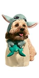 The Child dog costume