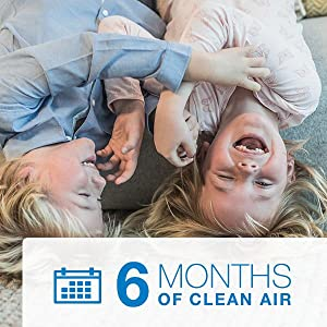 How often should you replace an air purifier filter? Replace every 6 months for clean air.