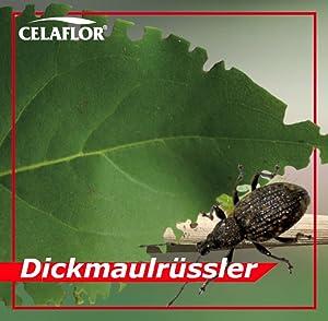 Celaflor sch dlingsfrei careo konzentrat zierpflanze for Gelbtafeln gegen zikaden