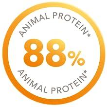 Iams kot senior zwierzęce białko