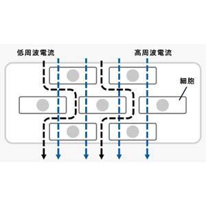 タニタ TANITA 体組成計 50g 日本製 シルバー RD-503 SV 医療分野の技術搭載/グラフでデータ管理 インナースキャンデュアル 体重計