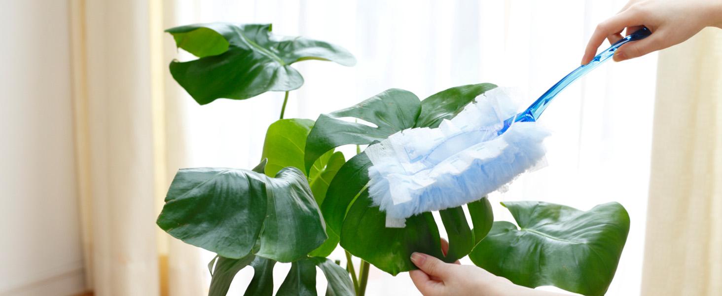 ウェーブハンディワイパーなら、観葉植物のホコリもサッとキレイ