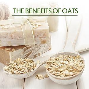 body lotion body moisturiser body cream aveeno daily moisturizer aveeno moisturizing lotion