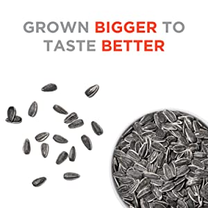 seeds sunflower seed ranch less salty low sodium protein snack fiber delicious snacks jumbo giant