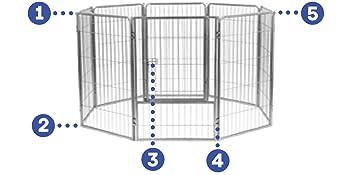 dog kennel, dog run, dog kennels, large kennel, dog kennel outdoor,