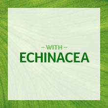 Cenovis echinacea; Echinacea tablets; Echinacea health benefits; Echinacea cold and flu remedy