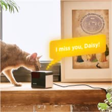 pet camera two-way audio feature