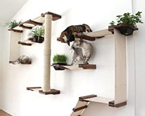 cat tree cat furniture cat bed cat hammock cat toy cat amazon     catastrophicreations cat mod garden  plex      rh   amazon