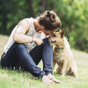 ペット 愛犬