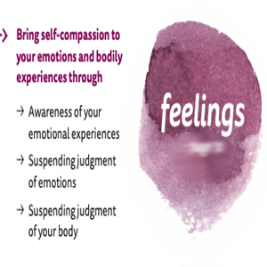 self compassion,compassion,love yourself,abuse,loving kindness, how to be nice to yourself everday