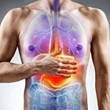 lindens digestive enzymes help to release nutrients food supplements stomach digestion bowels