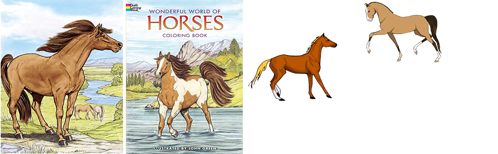 - Wonderful World Of Horses Coloring Book (Dover Nature Coloring Book): John  Green: 8601300296371: Amazon.com: Books