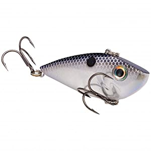 Red Eyed Shad