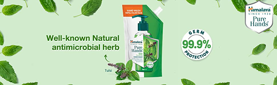well known natural antimicrobial herb