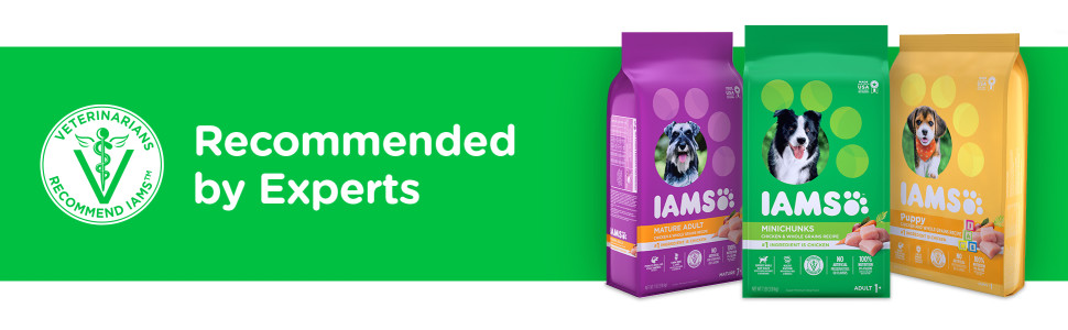 Iams Dry Dog - Recommended by Experts