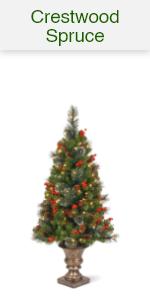 Crestwood Spruce Tree