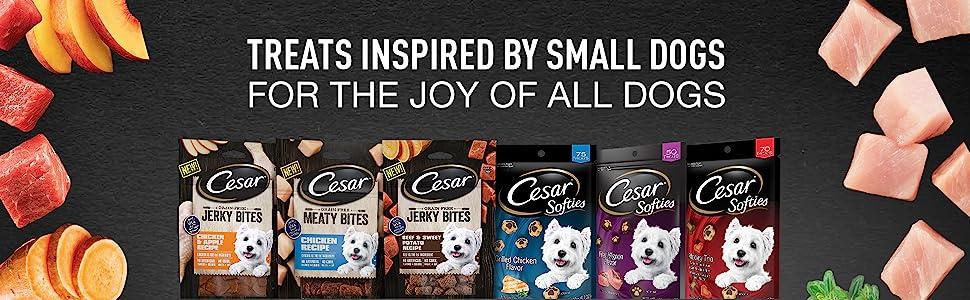 Little Dog Treats, Mini Dog Treats, Chewy Dog Treats, Meaty Dog Food, Toy Breed Dog Treats, Dog Bone