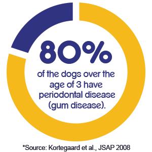 Prevents Periodontal disease in dogs