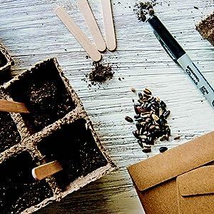 Indoor Seed Starting PLANTS