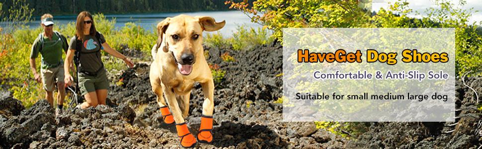 HaveGet Dog Shoes