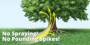 arbor day, trees, tree fertilizer, bayer, advanced, sbm