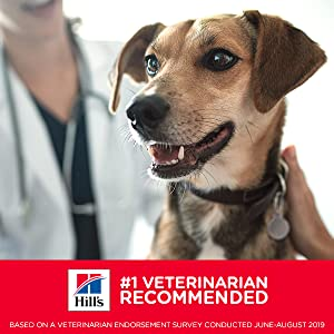 Veterinarians know what's best for your pet's health.