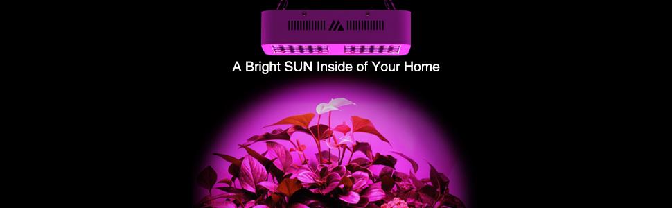 morsen led light best gift for your plants !